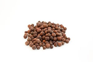 Allspice dream dictionary