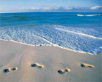 Dream Interpretation Footprints | RM.