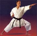 dream karate