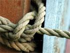dream knot