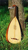 dream lute