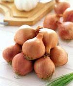 dream onions