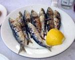 dream sardines