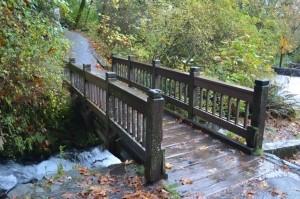 A dream about a bridge