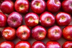 Apples dream dictionary