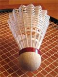 Badminton dream dictionary