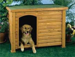 dream kennel
