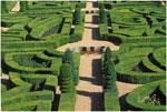 Labyrinth drem interpretation