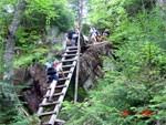 dream ladder