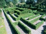 dream maze