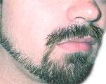 dream moustache