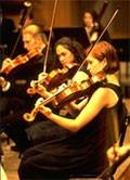 dream orchestra