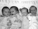 Quadruplets drem interpretation