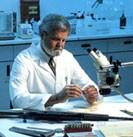dream scientist