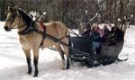 dream sledge