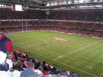 dream stadium