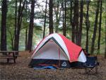 dream tent