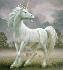 Unicorn drem interpretation