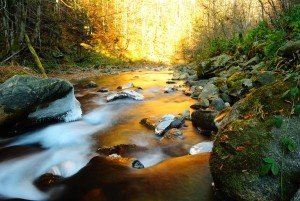 A dream about a river drem interpretation