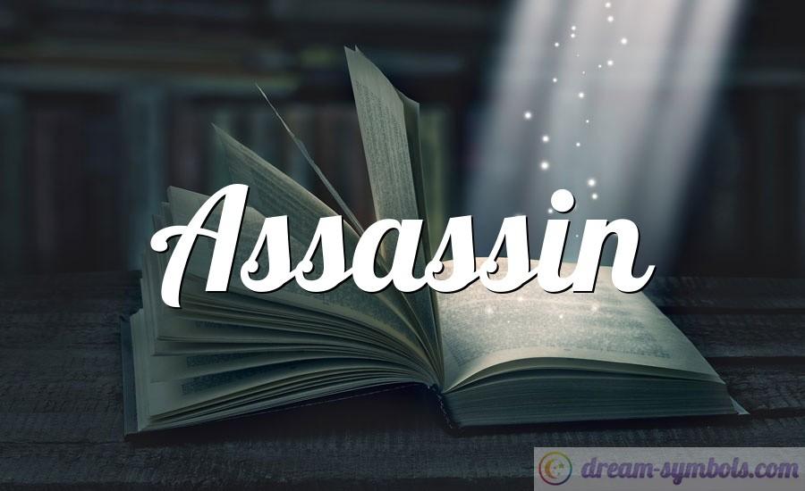 Assassin drem interpretation