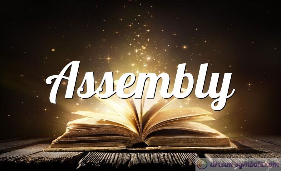 Assembly drem interpretation