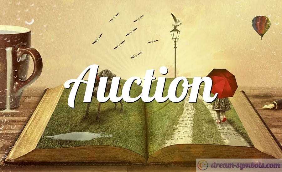 Auction drem interpretation
