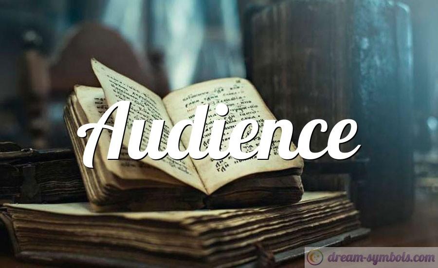 Audience drem interpretation